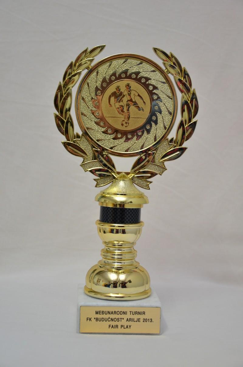Међународни турнир Ариље - фер плеј (2013)